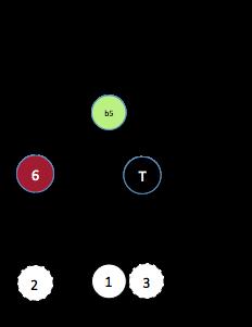 X dim (3§1)