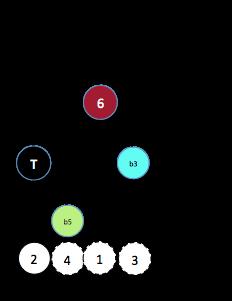 X dim (6§1)