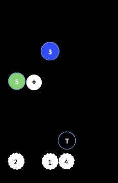 X Maj (5§1)