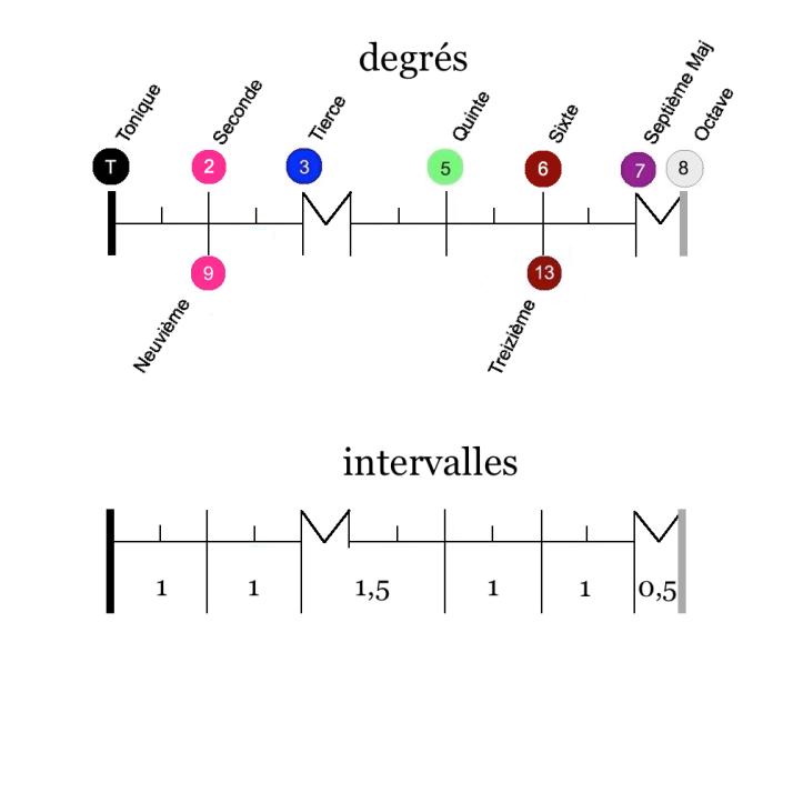 Notation Echelle degrés harmoniques gamme $ majeure