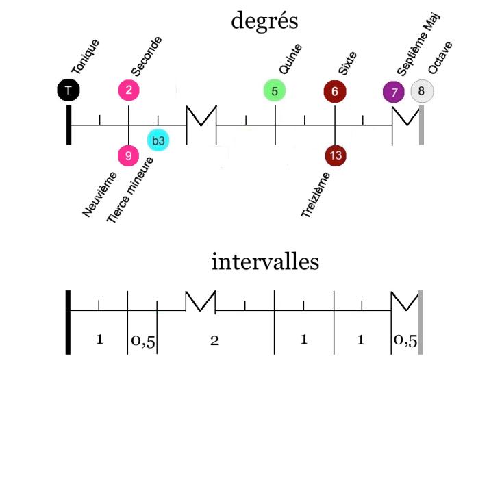 Notation Echelle degrés harmoniques gamme $ mel