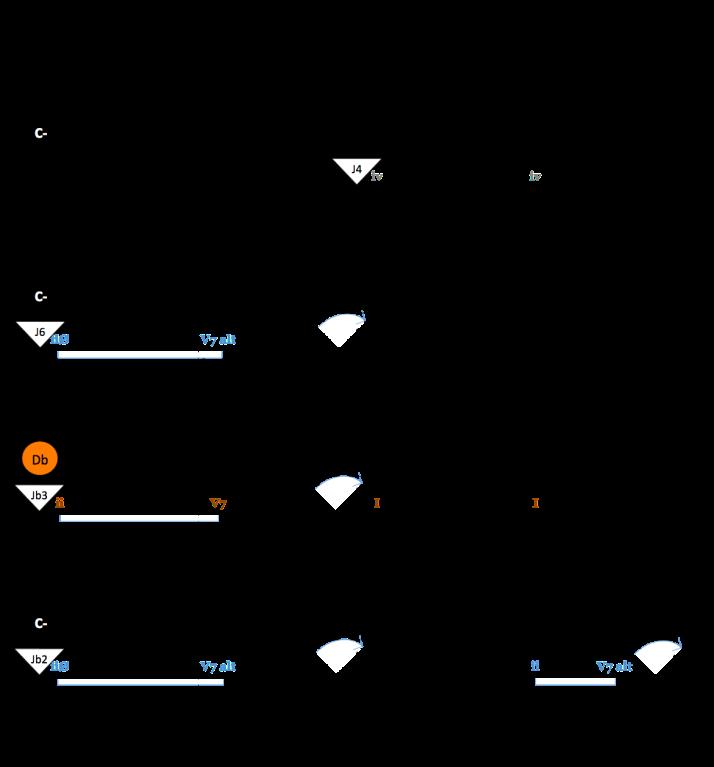 grille analyse BLUE BOSSA